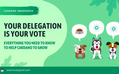 Your Delegation Is Your Vote