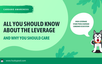 All You Should Know About The Leverage